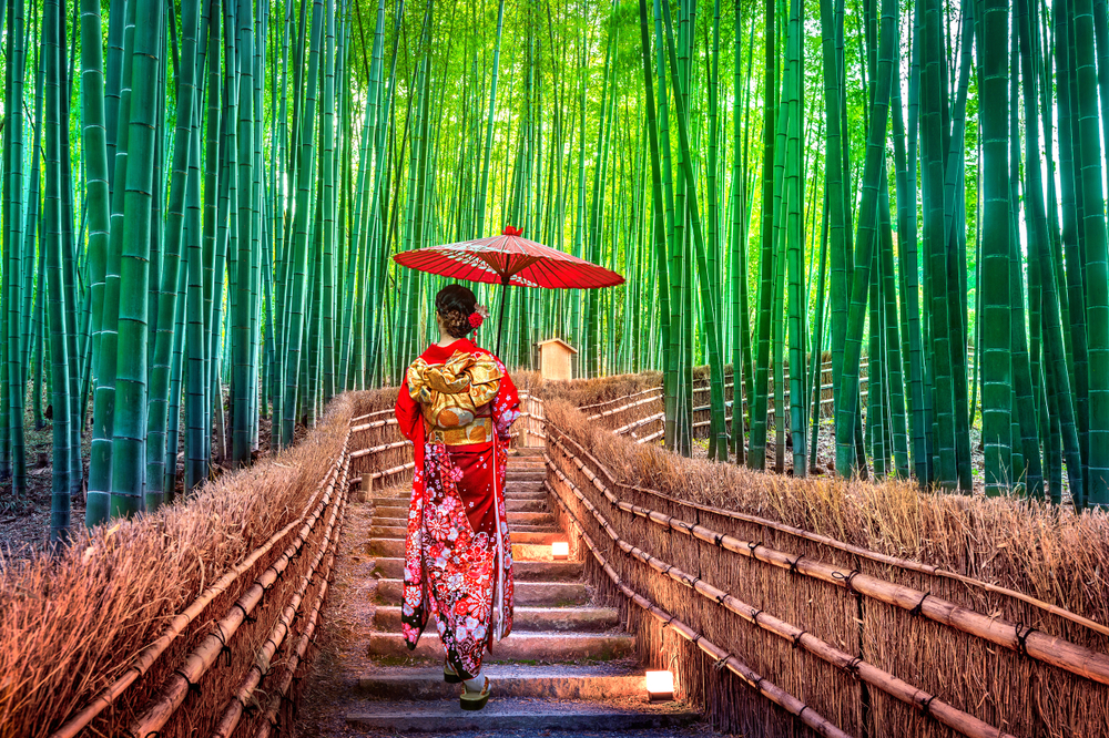A Bamboo Grove In Kyoto Is Ideal For Family Outings